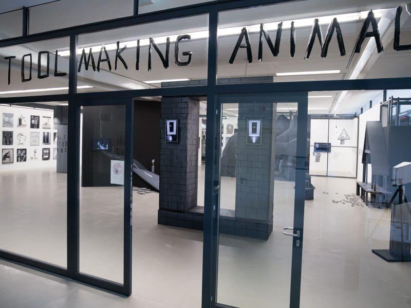 TOOL MAKING ANIMAL